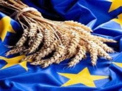 Politica Agricola Comune: la riforma lascia il tempo che trova