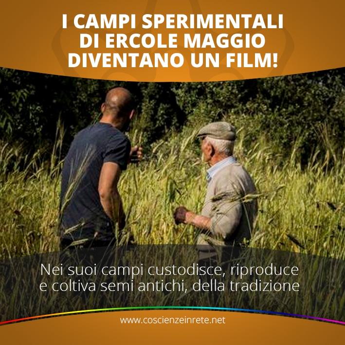 CIR Ercole Film