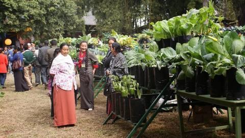 Un modello 100 biologico e possibile l esempio del Sikkim articleimage