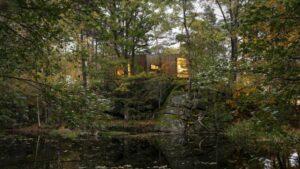 ospedali nei boschi