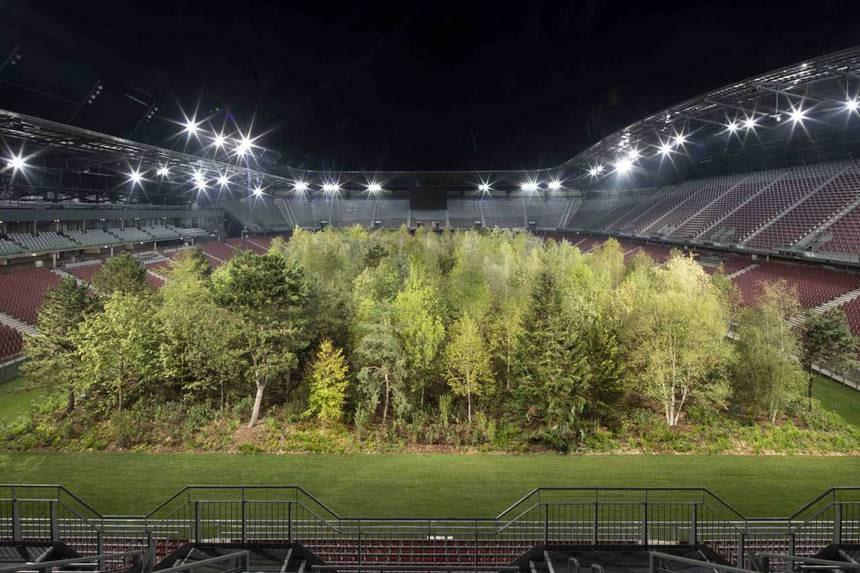L'artista Klaus Littmann pianta una foresta vivente in uno stadio da 30.000 persone