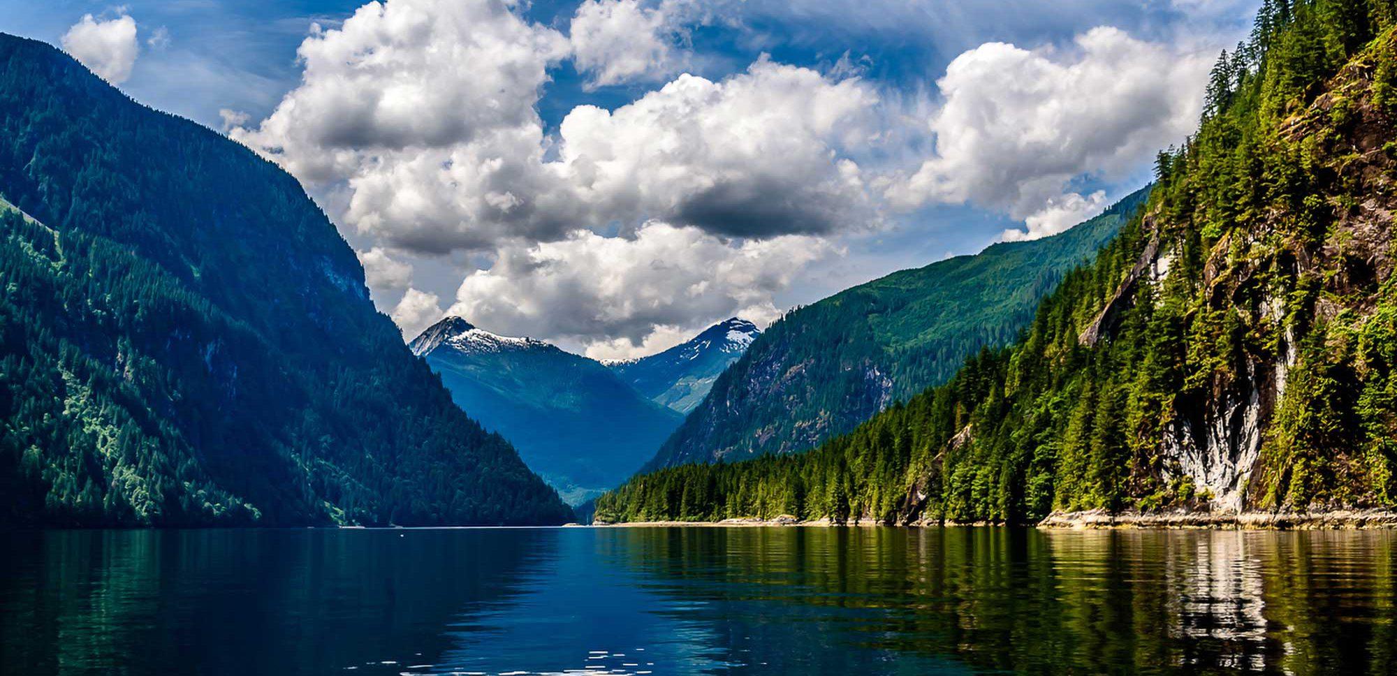 I canadesi utilizzano il crowdfunding per acquistare terreni per un nuovo parco pubblico protetto