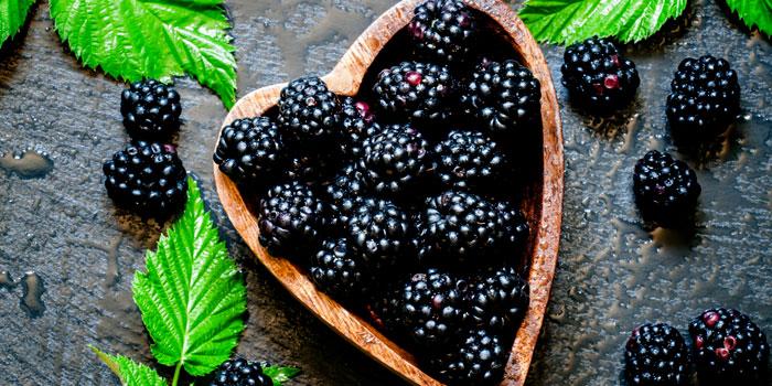Benefici delle more: proprietà della frutta ricca di antiossidanti