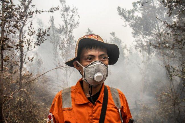 Anche l'Indonesia brucia. Ma il clima non c'entra. Coinvolte note multinazionali