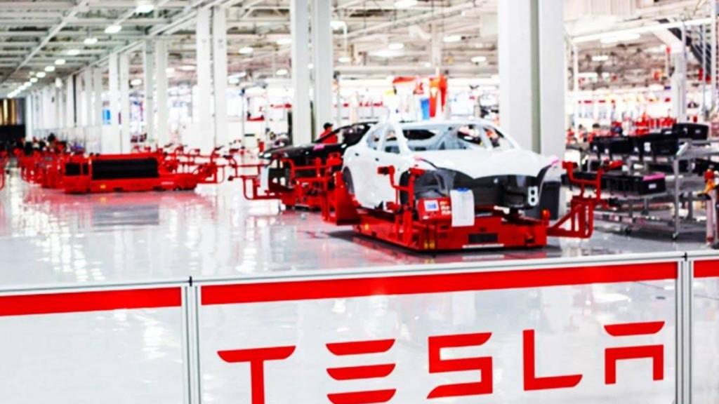 La Tesla abbatte una foresta per fare la sua fabbrica