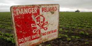 pesticidi test svizzero